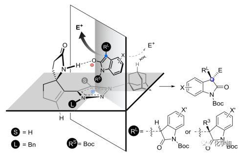 烷基八氮结构模型
